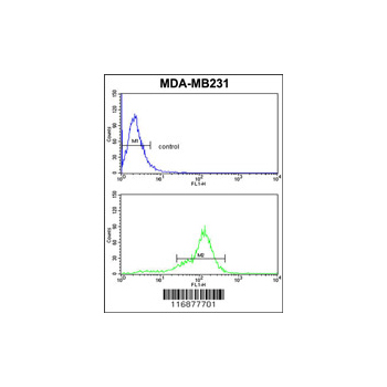 BCL2A1 antibody - center region (OAAB01121) in MDA-MB231 cells using Flow Cytometry