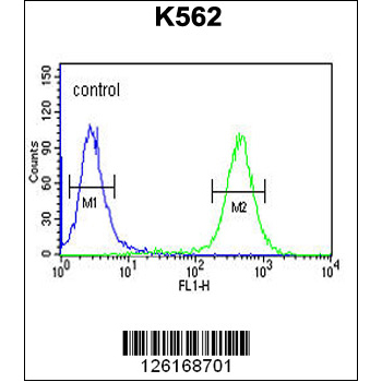 ATP4B Antibody (OAAB02598) in K562 cells using Flow Cytometry