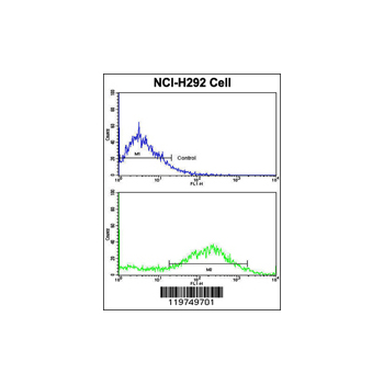 CALD1 antibody - center region (OAAB03633) in NCI-H292 cells using Flow Cytometry