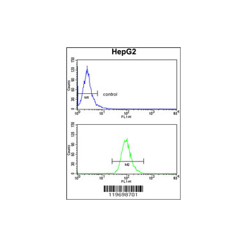 ADH1B antibody - center region (OAAB03812) in HepG2 cells using Flow Cytometry
