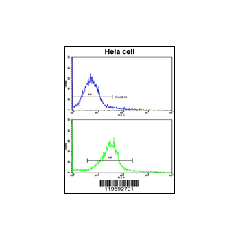 CUEDC2 antibody - C-terminal region (OAAB03898) in Hela cells using Flow Cytometry