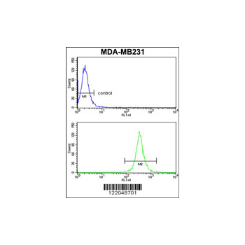 ARHGAP18 antibody - center region (OAAB05109) in MDA-MB231 cells using Flow Cytometry