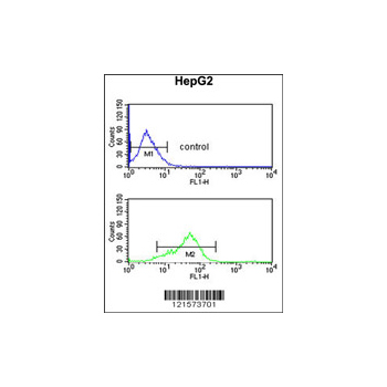 BANK1 antibody - center region (OAAB05262) in HepG2 cells using Flow Cytometry