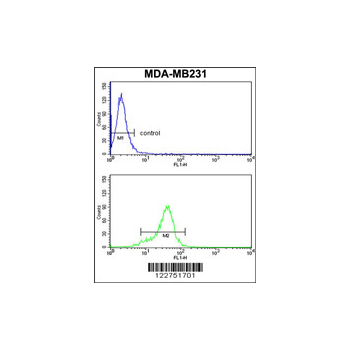 AGPAT4 antibody - center region (OAAB05301) in MDA-MB231 cells using Flow Cytometry