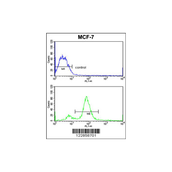 BMI1 Antibody (OAAB05353) in MCF-7 cells using Flow Cytometry