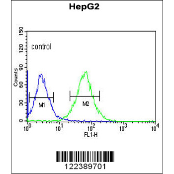 ACER3 antibody - C-terminal region (OAAB05549) in HepG2 cells using Flow Cytometry