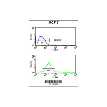 CDIPT antibody - center region (OAAB05631) in MCF-7 cells using Flow Cytometry