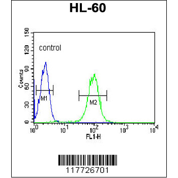 BPI antibody - center region (OAAB05648) in HL-60 cells using Flow Cytometry