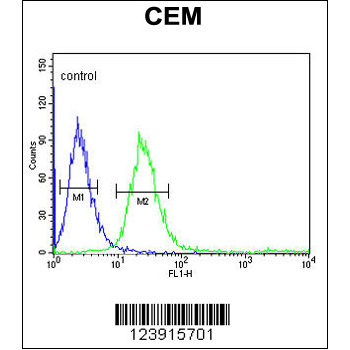 FCGR1B antibody - C-terminal region (OAAB05788) in CEM cells using Flow Cytometry