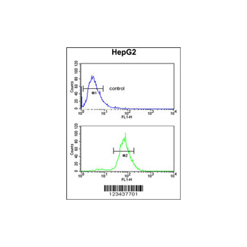 CDH20 antibody - N-terminal region (OAAB06470) in HepG2 cells using Flow Cytometry