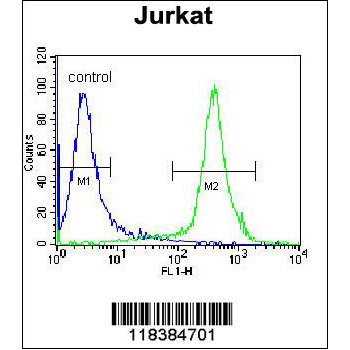 CAD antibody - center region (OAAB07352) in Jurkat cells using Flow Cytometry
