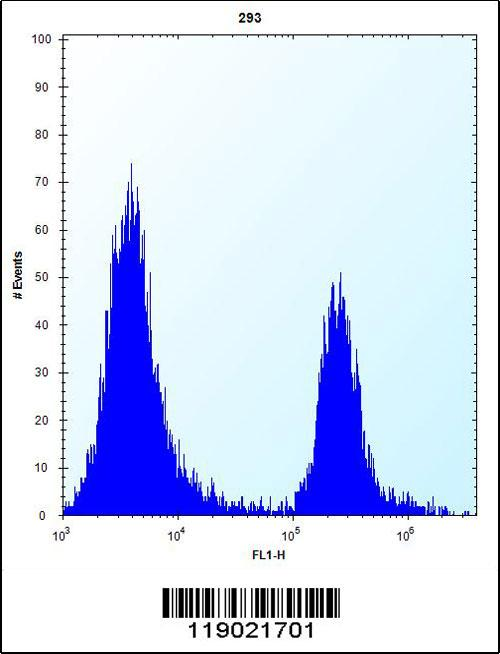CPN1 antibody - center region (OAAB09172) in 293 cells using Flow Cytometry