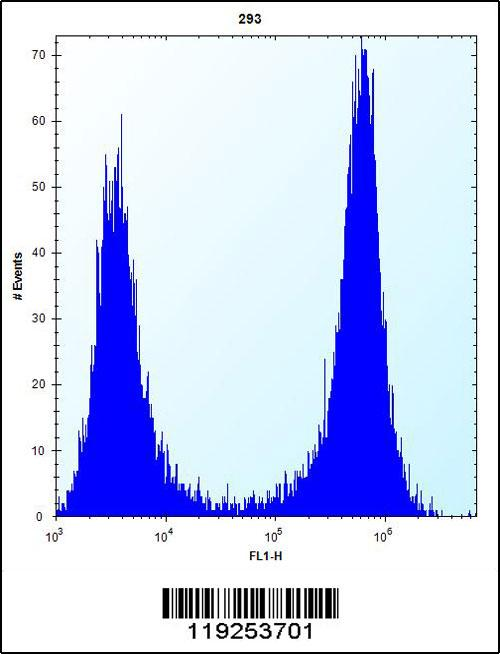 CTSK antibody (center region (OAAB09175) in 293 cells using Flow Cytometry