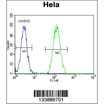 BMP2 antibody - center region (OAAB10156) in Hela cells using Flow Cytometry