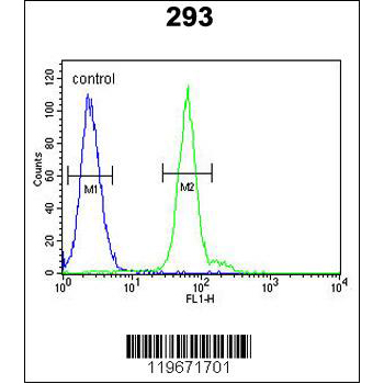 ATG14 antibody - center region (OAAB13864) in 293 cells using Flow Cytometry
