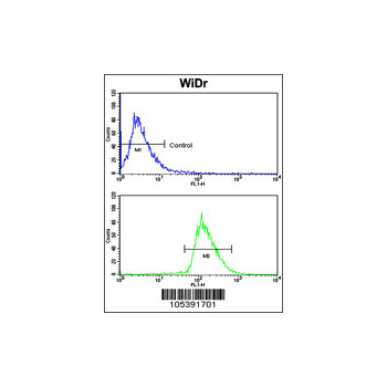 BMPR1A antibody - N - terminal region (OAAB15457) in WiDr cells using Flow Cytometry