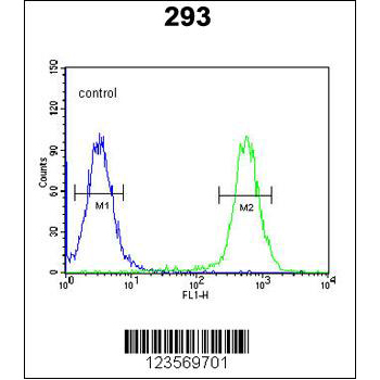 CSGALNACT2 antibody - center region (OAAB17666) in 293 cells using Flow Cytometry